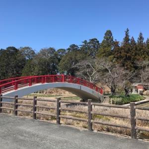 入れる古墳と賀茂神社