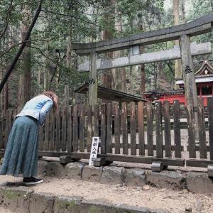 受付は10日まで。室生龍穴神社代行参拝