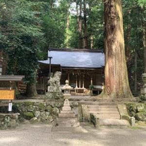 再開‼️Chieと行く室生龍穴神社同行参拝とランチ会