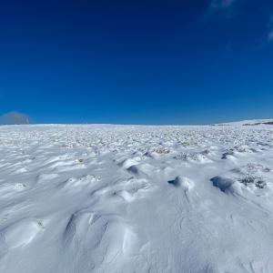 青と白の世界 美ヶ原・茶臼山