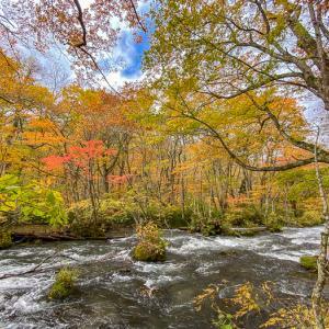 今日の旅ごはん 奥入瀬渓流とバラ焼き定食