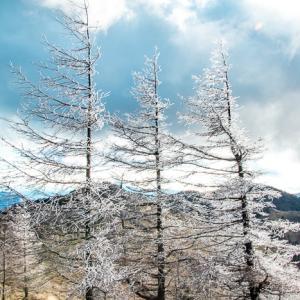 冬雲に追われて 大菩薩嶺