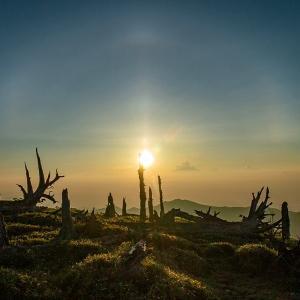 あの日のトレイル 大台ヶ原ある夏の朝