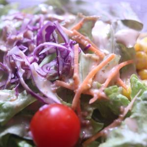 ダイエットに生野菜やサラダは効果的か?無理して食べなくて良いんじゃない。