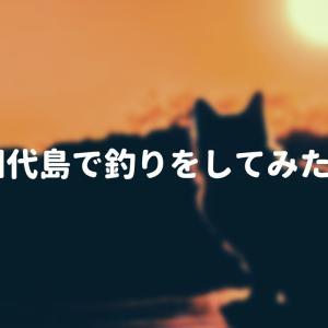田代島で釣りをしてみたい
