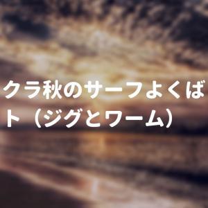 メジャクラ秋のサーフよくばりルアーセット(ジグパラジェット・浜王)