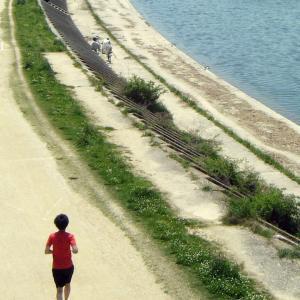 浜松防潮堤が20年3月末に完成!