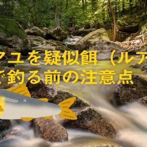 アユを疑似餌(ルアー)で釣る前の注意点 アユイング