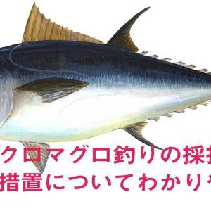 クロマグロ釣りの採捕禁止措置についてわかりやすく(R3.8.21~R4.5.31)