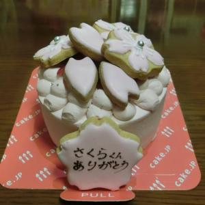 さくらうちの子13周年記念日 ~ケーキ編~