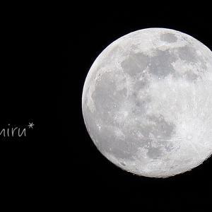 月は優しい。