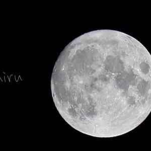 お月見…だけど