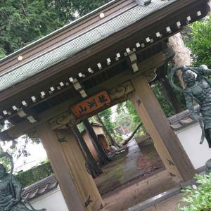 木が倒れちゃったお寺 相模原市 龍渕山 天応院(天應院)