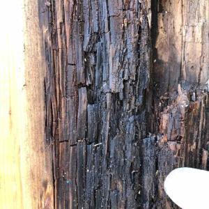 木造の劣化