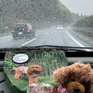 雨の中北上~初日はぽん家へ