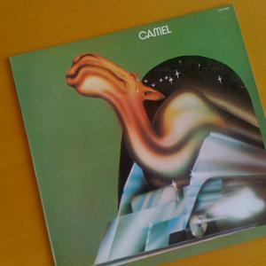 今日の一曲 2/28  Camel (楽だ~の涙)