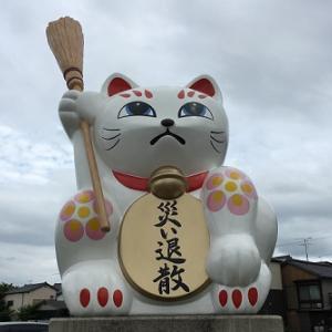 福岡・「追い出し猫」のいる宮若市