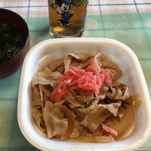 豚丼と和風ハーゲンダッツ