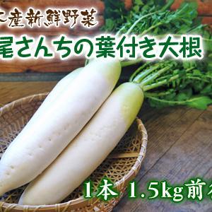朝採りダイコン発売開始!!(2019)『七城米 長尾さんこだわりのお米』新米も好評発売中!!
