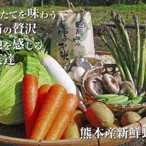 長尾ブランドの新鮮野菜!大人気の朝採りダイコンに続き、朝採りニンジン、朝採りほうれん草販売スタート!