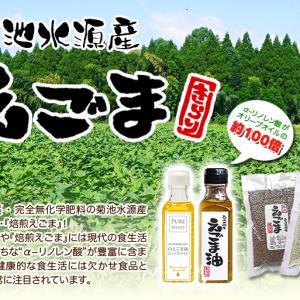 令和元年度産『焙煎白エゴマ粒』販売スタート!無農薬・無化学肥料で育てた「菊池水源産エゴマ」です!