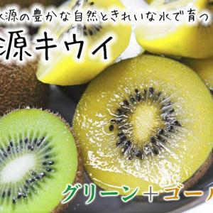 キウイの芽吹き(2020) 今年も完全無農薬、無化学肥料で育てます!