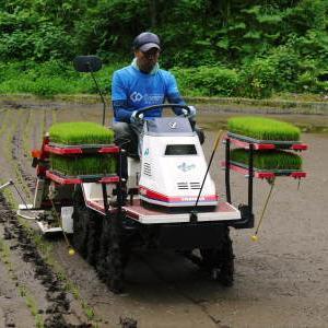米作りの挑戦(2020) 田植え 今年は昨年よりもさらに10日早い田植えです!(前編)
