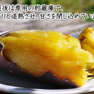 熟成サツマイモ『紅はるか』大好評販売中!栽培歴50年の匠が育てた熊本県産のからいもです!