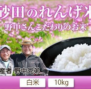 熊本県菊池市七城町「砂田のこだわりれんげ米」大好評販売中!令和3年の栽培の様子!れんげの発芽