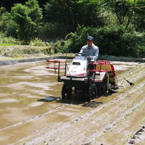 米作りの挑戦(2021) 田植え 6月9日に田植えを終えました!(前編:苗床から田植え前まで)