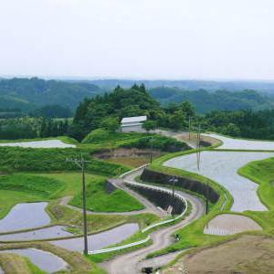 菊池水源棚田米 田植え(2021) 後編:田植え後の様子