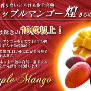 熊本県産!樹上完熟アップルマンゴー令和3年の予約受付開始!煌&ファミリータイプの商品ラインナップ紹介