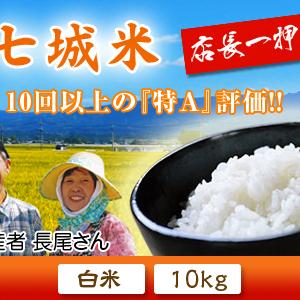 七城米 熊本県菊池市七城町の「長尾農園」さんのお米は今年も見事に美しすぎる田んぼで元気に成長中!