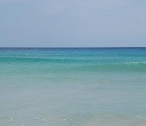 【新しい旅へ】スリランカ旅行講座