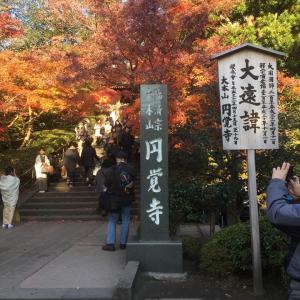 婆娑羅日記Vol.41~鎌倉探訪記in2017⑥(円覚寺)