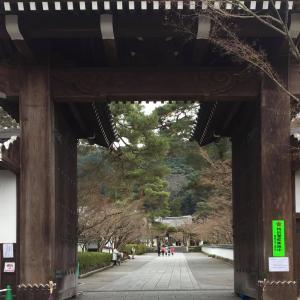 婆娑羅日記Vol.42~京都旅行記in2017②(禅林寺)