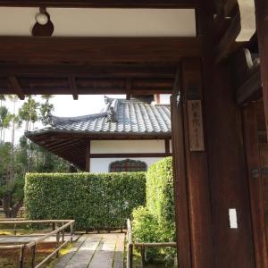 婆娑羅日記Vol.42~京都旅行記in2017④(大徳寺❷)