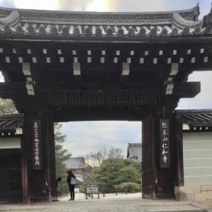 婆娑羅日記Vol.42~京都旅行記in2017⑧(仁和寺❷)