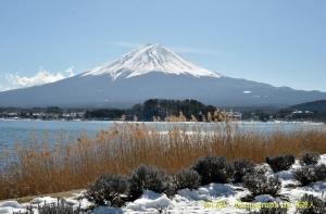 『 河口湖からの富士山 』