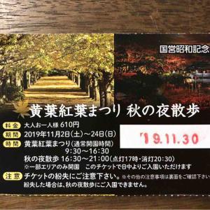 秋の夜散歩@昭和記念公園
