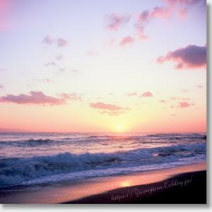 いつかの海へ また行きたい。