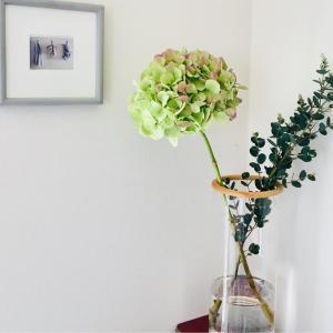 新しい花屋さんと 新年度