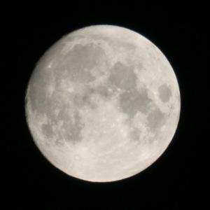 キレイなお月さんでした