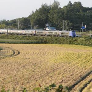 ロイヤル追っかけ 8月28日十沸川鉄橋