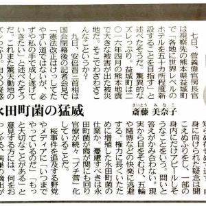 山本太郎「相手がマトモじゃないのに、こちらが紳士的に戦っても何にも得られるものない」