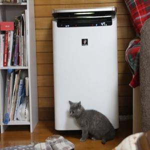 猫 シャープさん空気清浄機 改善必要? 肉球でチャイルドロック解除する