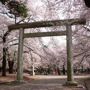 夢で訪れる神社。