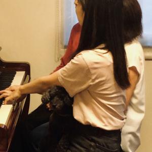 ピアノの先生のオフ会