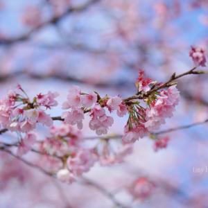 4月ハジマリ +空き時間に *