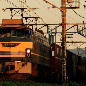 EF66-27牽引 1089レを撮影